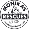 doggie rescue supported by small paws